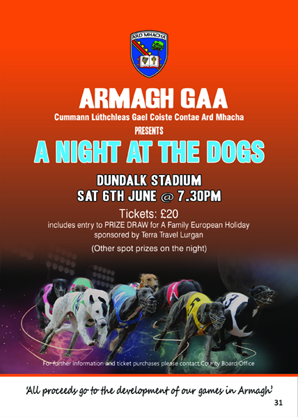 Armagh Night at the Dogs