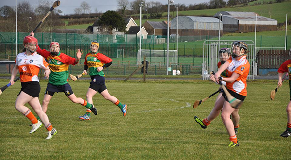 Armagh camogs lose out to Carlow