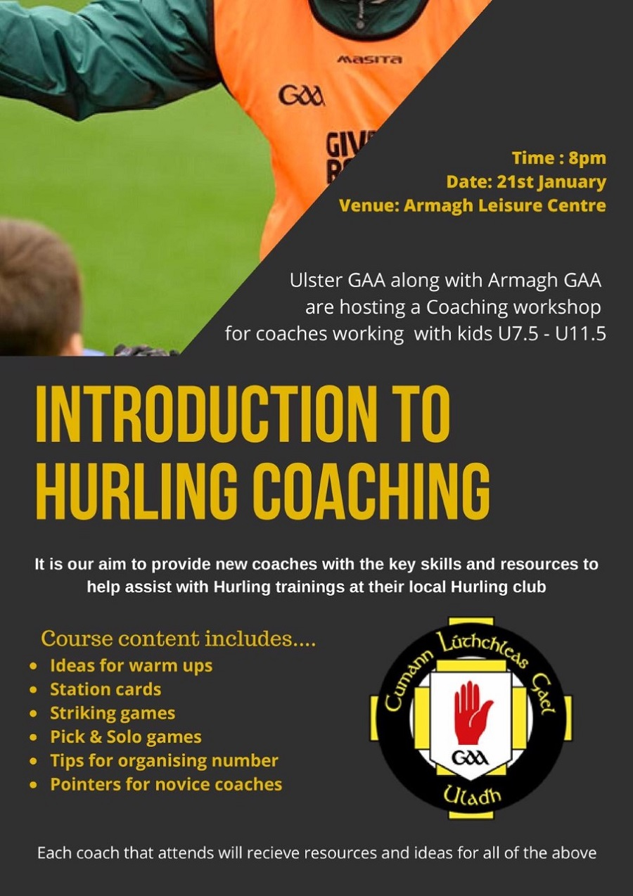 Introduction to Hurling workshop