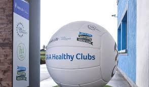 Training: Healthy Club Officer Workshop